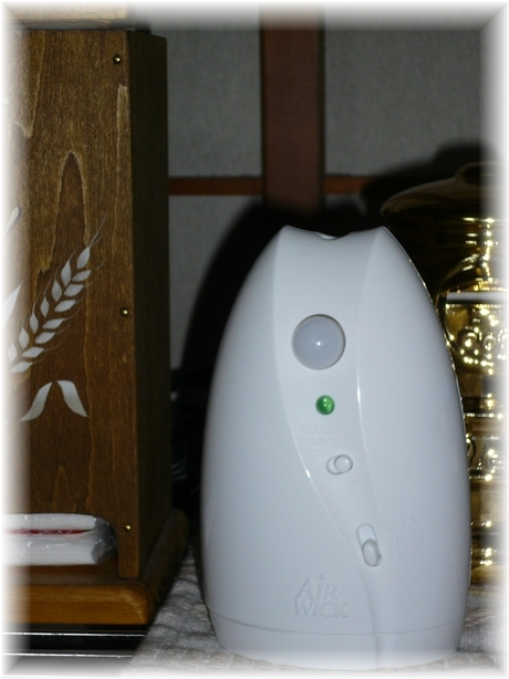 P1040099.JPG